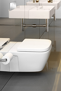 WALL HUNG PANS, the latest in European trends, these pans suit a concealed Invisi cistern.